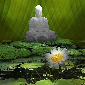 buddha-leafs