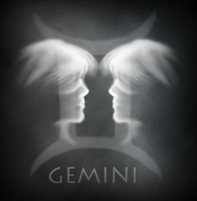 gemini1214