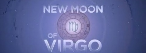 nmvirgo9313